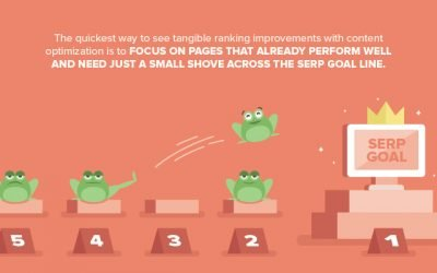 Your complete guide to content optimization